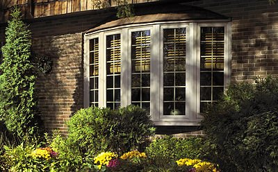 Baumann Windows Lakewood CO